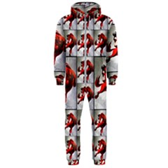 1 Hooded Jumpsuit (men)