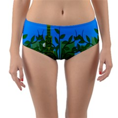 Environmental Protection Reversible Mid Waist Bikini Bottoms
