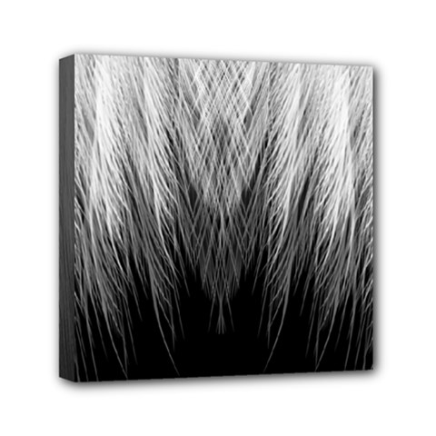 Feather Graphic Design Background Mini Canvas 6  X 6  (stretched)