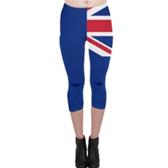Government Ensign Of Northern Ireland, 1929-1973 Capri Leggings  by abbeyz71