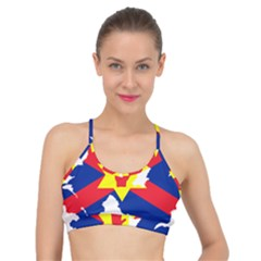 Ulster Nationalists Flag Map Of Northern Ireland Basic Training Sports Bra