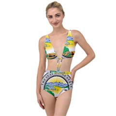 State Seal Of Alaska  Tied Up Two Piece Swimsuit