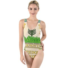 Great Seal Of Vermont High Leg Strappy Swimsuit by abbeyz71