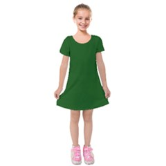 Flag Of The Green Mountain Boys Kids  Short Sleeve Velvet Dress by abbeyz71
