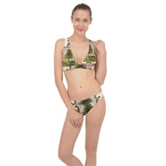 Coat Of Arms Of Vermont Classic Banded Bikini Set  by abbeyz71