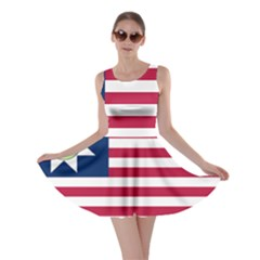 Flag Of Vermont, 1837-1923 Skater Dress by abbeyz71