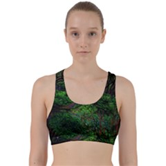 Wilderness Crossing Back Weave Sports Bra by bloomingvinedesign