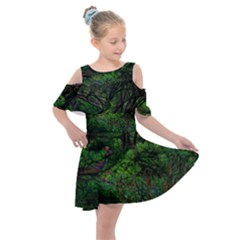 Wilderness Crossing Kids  Shoulder Cutout Chiffon Dress by bloomingvinedesign