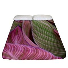 Pink Leaves Fitted Sheet (king Size) by snowwhitegirl