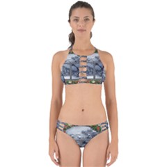 Winter 1660924 1920 Perfectly Cut Out Bikini Set