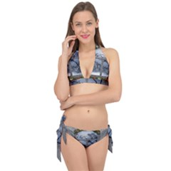 Winter 1660924 1920 Tie It Up Bikini Set