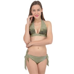 Background 1706642 1920 Tie It Up Bikini Set