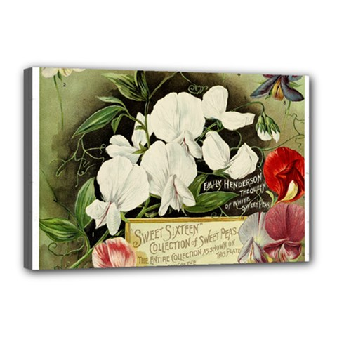 Flowers 1776617 1920 Canvas 18  X 12  (stretched) by vintage2030