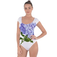 Flower 1775377 1280 Short Sleeve Leotard  by vintage2030