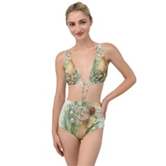 Fairy 1225819 1280 Tied Up Two Piece Swimsuit