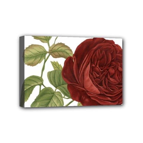 Rose 1077964 1280 Mini Canvas 6  X 4  (stretched) by vintage2030