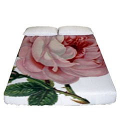 Rose 1078272 1920 Fitted Sheet (queen Size) by vintage2030