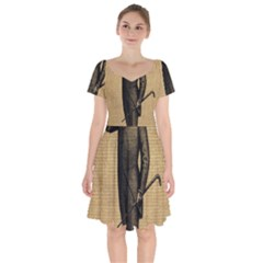 Vintage 1060202 1920 Short Sleeve Bardot Dress