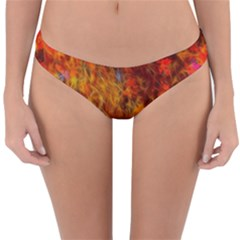 Fall Bokeh Highlights Reversible Hipster Bikini Bottoms by bloomingvinedesign