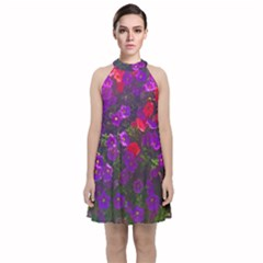 Purple Petunias Velvet Halter Neckline Dress  by bloomingvinedesign