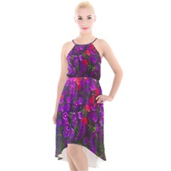 Purple Petunias High Low Halter Chiffon Dress  by bloomingvinedesign