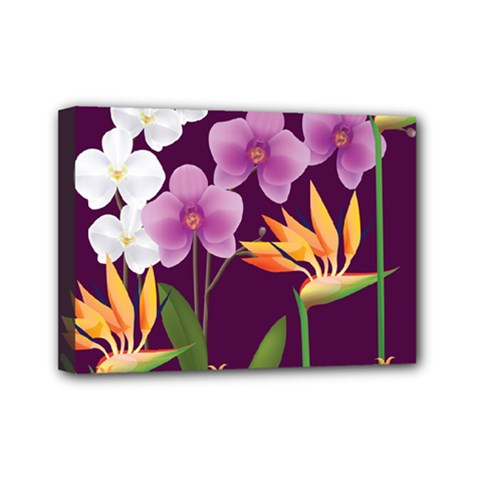 White Blossom Flower Mini Canvas 7  X 5  (stretched)