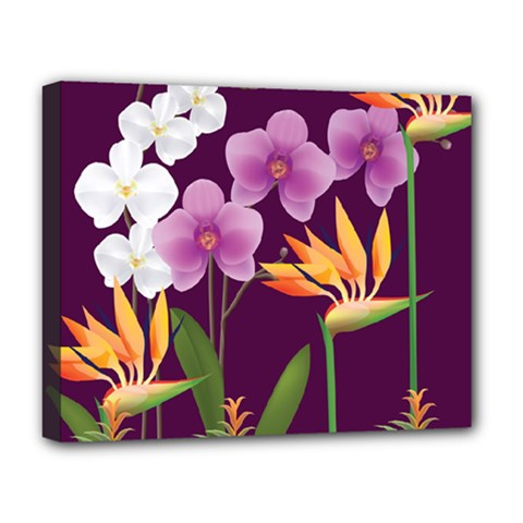 White Blossom Flower Deluxe Canvas 20  X 16  (stretched)
