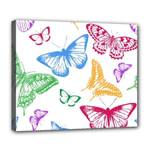 Butterfly Butterflies Vintage Deluxe Canvas 24  X 20  (stretched)