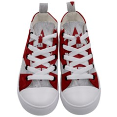 Canada Grunge Flag Kid s Mid Top Canvas Sneakers