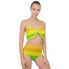 Ombre Scallop Top Cut Out Swimsuit