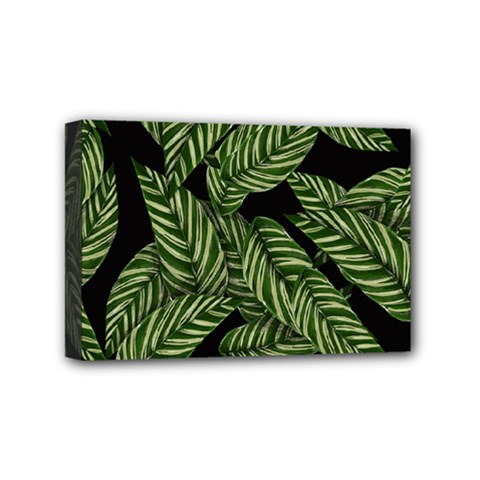Tropical Leaves On Black Mini Canvas 6  X 4  (stretched)