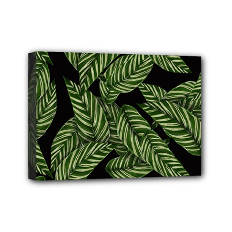 Tropical Leaves On Black Mini Canvas 7  X 5  (stretched)