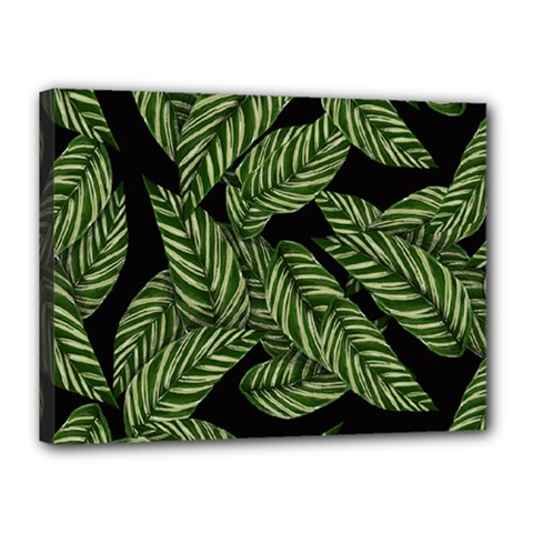 Tropical Leaves On Black Canvas 16  X 12  (stretched)