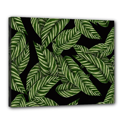 Tropical Leaves On Black Canvas 20  X 16  (stretched)