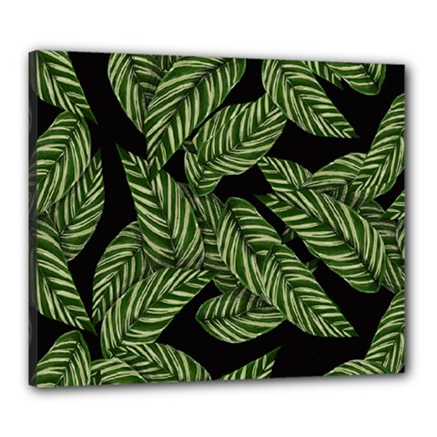 Tropical Leaves On Black Canvas 24  X 20  (stretched)