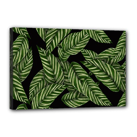 Tropical Leaves On Black Canvas 18  X 12  (stretched)