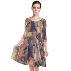 Head Horse Animal Vintage Quarter Sleeve Waist Band Dress