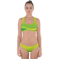 Background Color Fresh Beautiful Cross Back Hipster Bikini Set by Simbadda