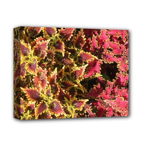 Plant Leaves Foliage Pattern Deluxe Canvas 14  X 11  (stretched)