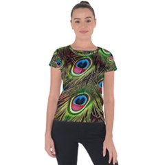 Peacock Feathers Color Plumage Short Sleeve Sports Top  by Celenk