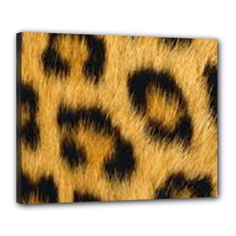 Animal Print Leopard Canvas 20  X 16  (stretched)