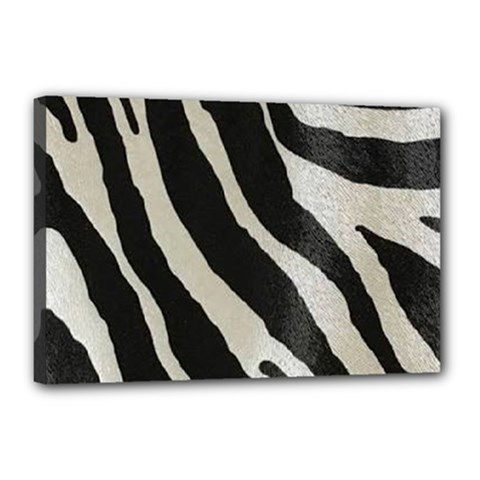 Zebra Print Canvas 18  X 12  (stretched) by NSGLOBALDESIGNS2
