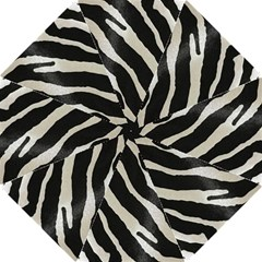 Zebra Print Folding Umbrellas by NSGLOBALDESIGNS2