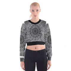 Sunflower Print Cropped Sweatshirt by NSGLOBALDESIGNS2