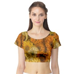 Yellow Zinnias Short Sleeve Crop Top