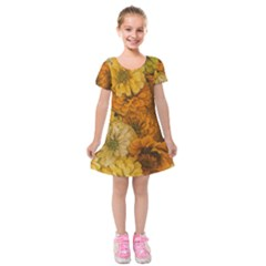 Yellow Zinnias Kids  Short Sleeve Velvet Dress