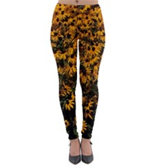 Field Of Yellow Flowers Lightweight Velour Leggings