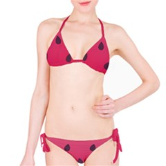 Watermelon Fruit Summer Red Fresh Classic Bikini Set