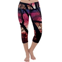 Fall Sunset Through The Trees Capri Yoga Leggings