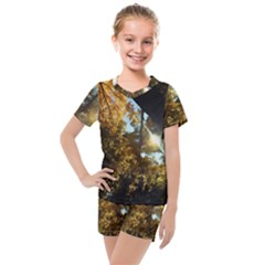 Fall Yellow Swirly Sunlight Kids  Mesh Tee And Shorts Set